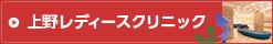 上野レディースクリニック